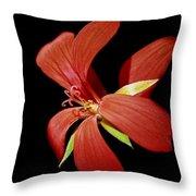 Geranium Flower Throw Pillow