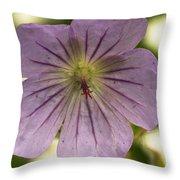Geranium II Throw Pillow