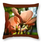Geranium Joy Throw Pillow