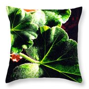 Geranium Leaves Throw Pillow