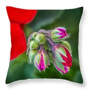 Geranium Throw Pillow