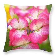 Geraniums On A Brilliant Summer Day Throw Pillow