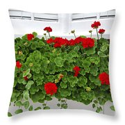Geraniums On Window Throw Pillow by Elena Elisseeva