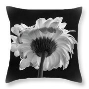 Gerbera Daisy 2 Throw Pillow