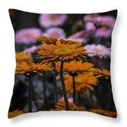 Gerbera Daisy Garden Throw Pillow