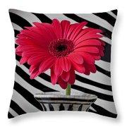 Gerbera Daisy In Striped Vase Throw Pillow