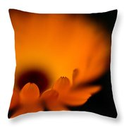 Gerbera Fire Throw Pillow