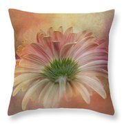 Gerbera From The Back Throw Pillow
