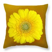 Gerbera - Id 16235-220247-8361 Throw Pillow