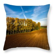 Fields From Above Throw Pillow