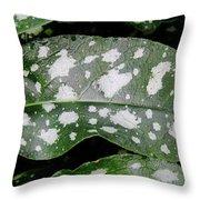 Lungwort Throw Pillow