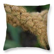 German Millet Throw Pillow