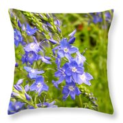 Germander Speedwell Throw Pillow