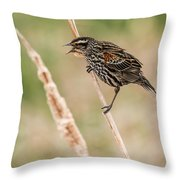 Get Away From Here Throw Pillow