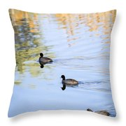 Getting My Ducks In A Row Throw Pillow