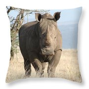 Getting Ready To Charge Throw Pillow