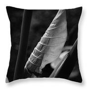 Getting Started Throw Pillow