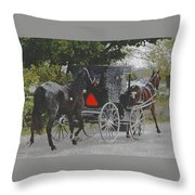 Getting The New Horse Home Throw Pillow