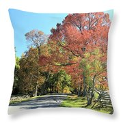 Gettysburg  In The  Fall Throw Pillow