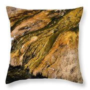 Geyser Basin Springs Throw Pillow