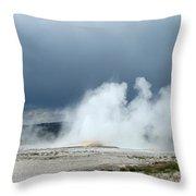 Geyser Field Throw Pillow