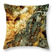Geyser Paisley Art Throw Pillow