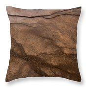 Geyser Patterns Throw Pillow