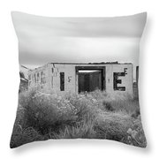 Ghiacciare La Casa Throw Pillow