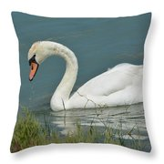 Ghost In The Lagoon Throw Pillow