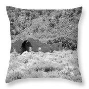 Ghost Of Colorado Throw Pillow