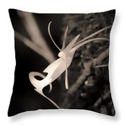 Ghost Orchid At First Light Throw Pillow