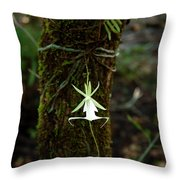 Ghost Orchid Of The Fakahatchee Strand Throw Pillow
