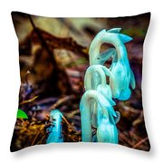 Ghost Plant Throw Pillow