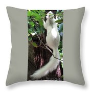 Ghost Squirrel Throw Pillow