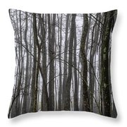 Ghost Swamp Throw Pillow