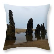 Ghost Trees Of Neskowin  Throw Pillow