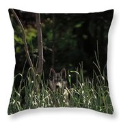 Ghost Wolf Throw Pillow by DigiArt Diaries by Vicky B Fuller