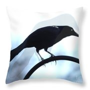 Ghosted Grackle Throw Pillow