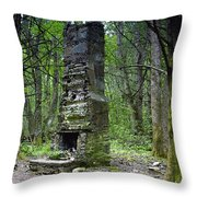 Ghostly Reminder Throw Pillow