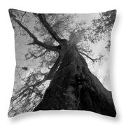 Ghostly Tree Throw Pillow