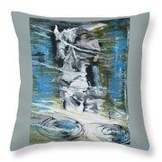 Ghostrider Reflection Throw Pillow