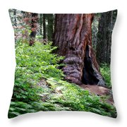 Giant Among The Forest Throw Pillow