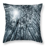 Giant Bamboo In Forest With Sunflare, Black And White Throw Pillow