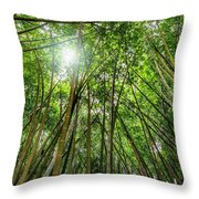 Giant Bamboo In Forest With Sunflare Throw Pillow
