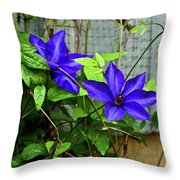 Giant Blue Clematis Throw Pillow