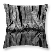 Giant Cypress Tree Trunk And Reflection 2 Throw Pillow