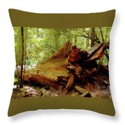 Giant Has Lived Its Life Throw Pillow