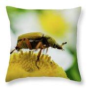Giant Throw Pillow