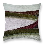 Giant Lilly Pads Throw Pillow