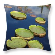 Giant Lily Pads Throw Pillow